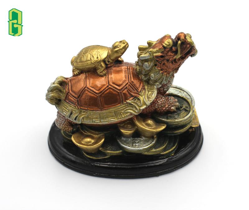 Rùa Đầu Rồng Có Tác Dụng Gì?