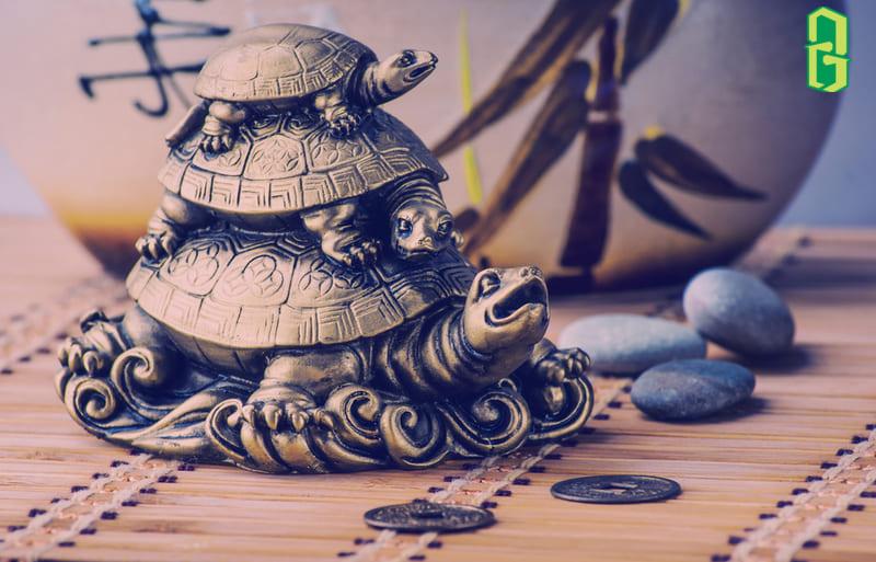 Hình Tượng Rùa Trong Các Nền Văn Hóa
